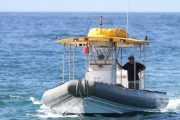 Maui Adventure cruises Whale Watch