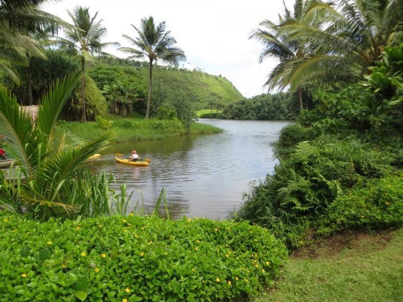 Kauai Wailua River Kayak Tour