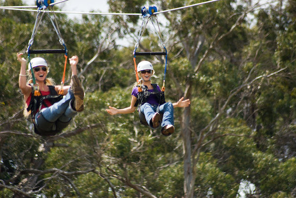 Maui Zipline Tours Piiholo Ranch Side by Side