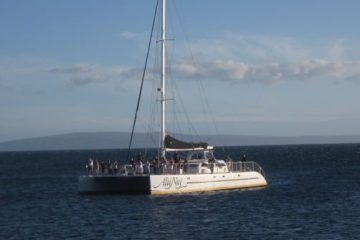 Alii Nui Whale Watch Cruise