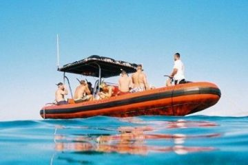 Ocean Riders Lanai Snorkel Turtles