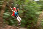 Maui Zipline Tours Piiholo Ranch Tree Top