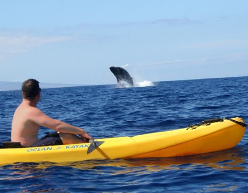 South Pacific Kayak Snorkel Cruise