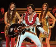 Elvis Burn In Love Show