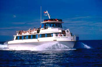 Lahaina BYOB 4th of july fireworks cruise