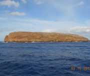 Molokini Snorkel Tour Maui Magic