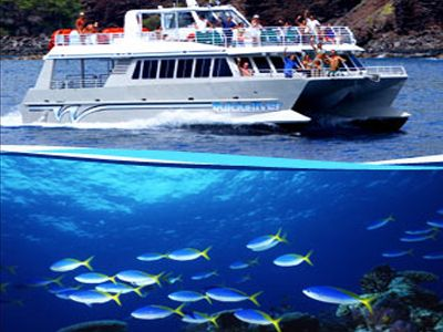 Quicksilver Snorkeling Cruise