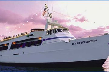 Maui Princess 4th of July Dinner Cruise