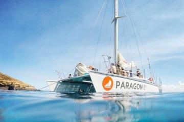 Paragon Molokini Snorkel Tours