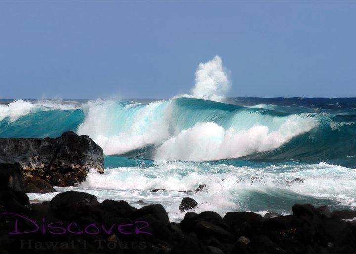 Black-Sand-Beach-Coconut-Grove-big-waves
