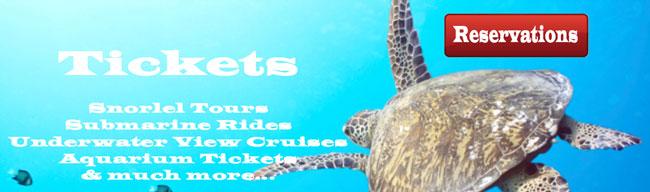 Maui Tours and Activity Sales, Ocean Tours
