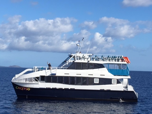 Calypso Maui Ocean Tours, Snorkel and Sunset Cruise