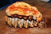 Dinner-Cruise Lobster