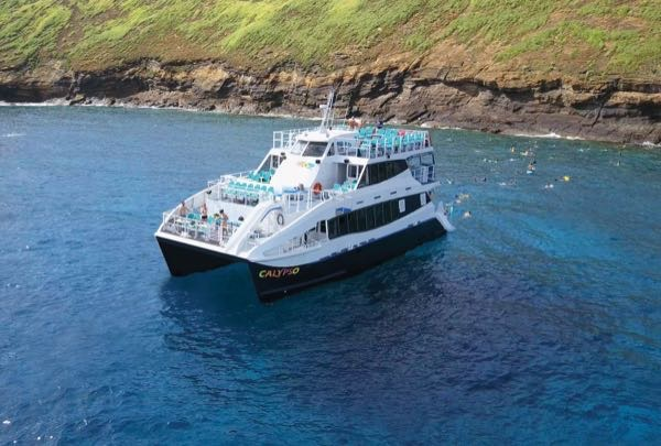 Calypso-Molokini-and-Turtle-Town-Snorkel