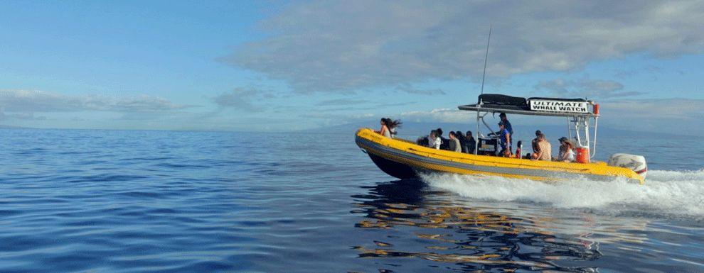 Private Snorkel Tour to Lanai
